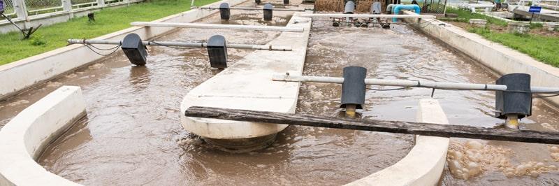 Biologické čištění odpadních vod
